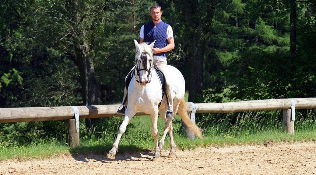 Oliver Hilberger Psychische Komponenten in der Pferdeausbildung